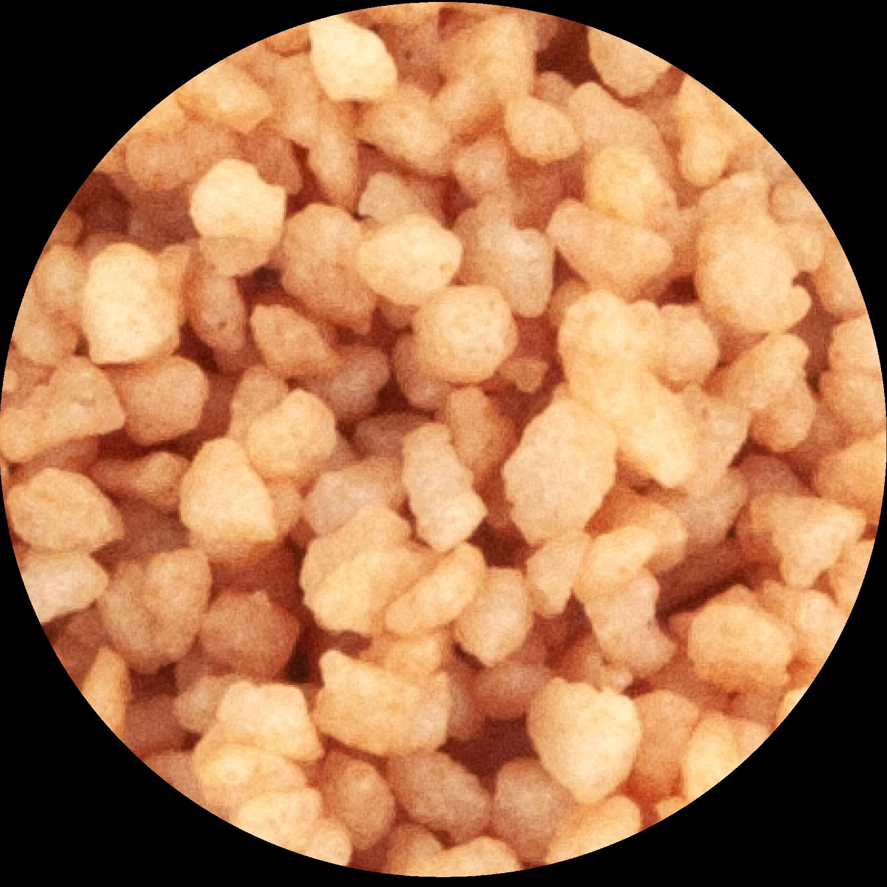 pearl sugar hazelnut paste